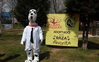 5a Feria adopciones 01