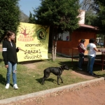 5a Feria adopciones 03