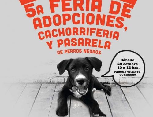 5a Feria de adopciones cachorriferia y pasarela de perros negros