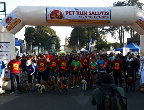 Pet Run Salutis – Toluca 2019
