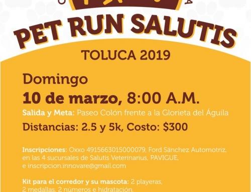 Pet Run Salutis 2019