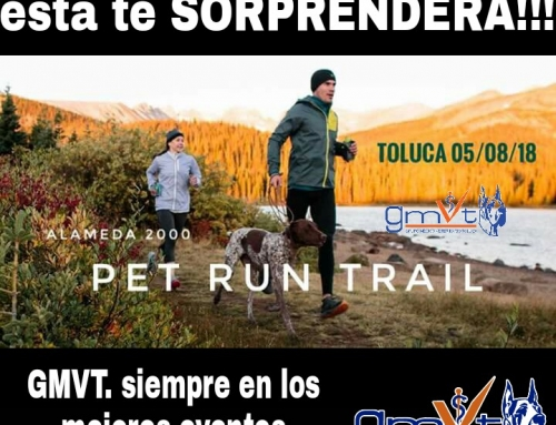 GMVT – Pet Run Trail