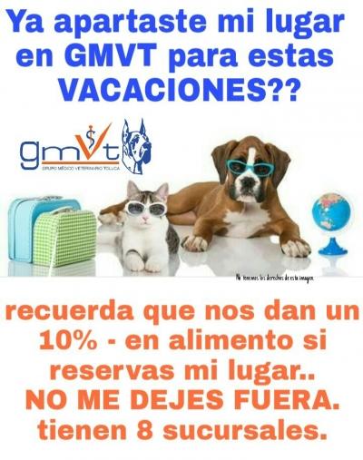 gmvt-promovacaciones