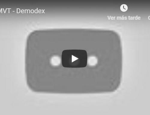Demodex