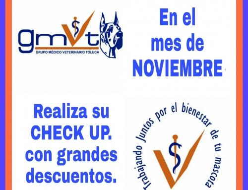Promoción Noviembre 2018 en GMVT