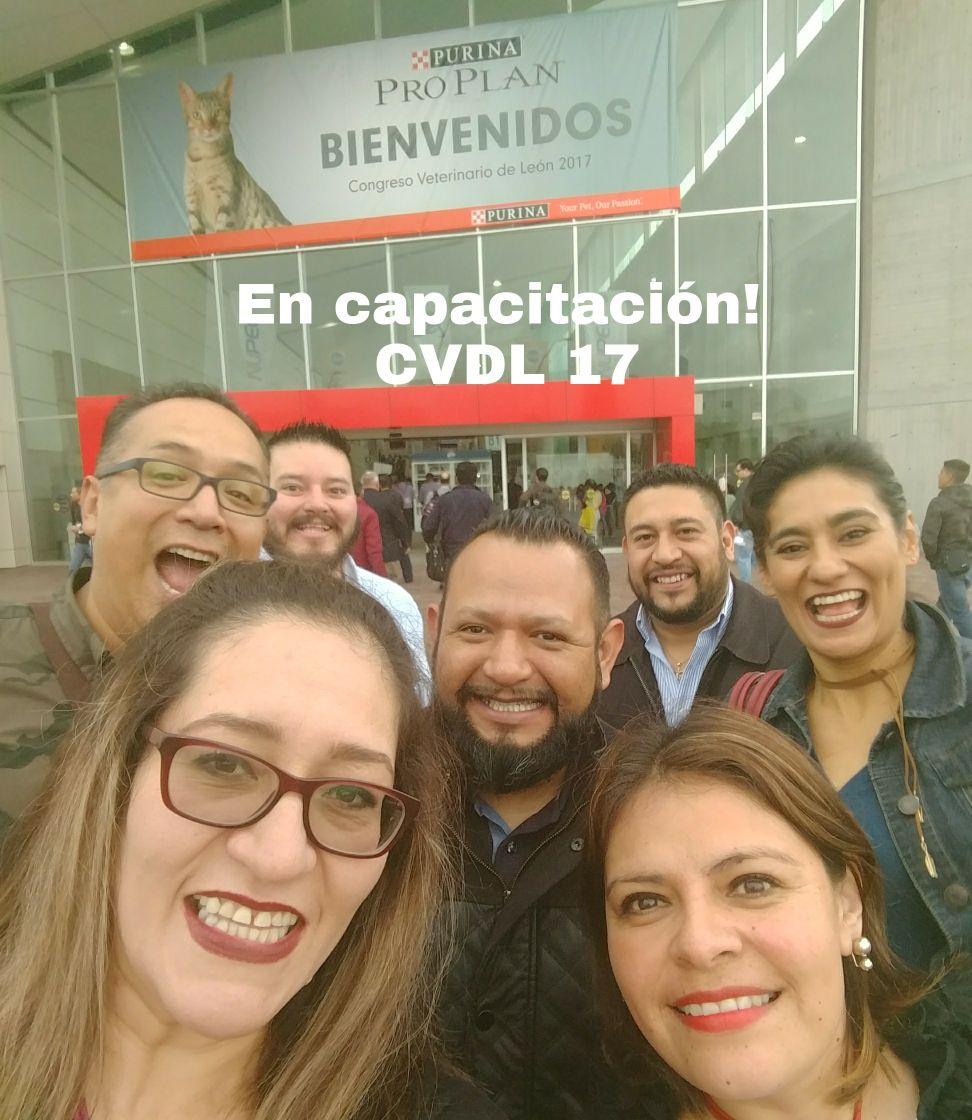 GMVT-CapacitacionCVDL17