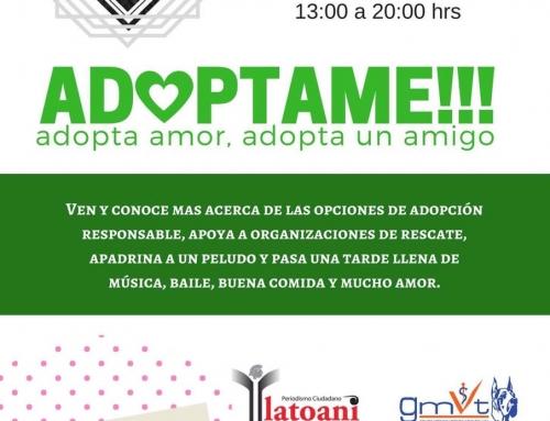Adopta amor, adopta un amigo