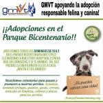 gmvt-adopcionresponsable