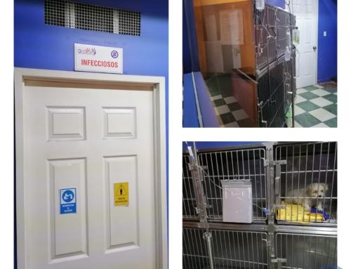 ¿Que tan importante es el tener una área específica de atención para mascotas infecciosas?