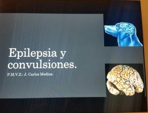 Capacitación – Epilepsia y Convulsiones.
